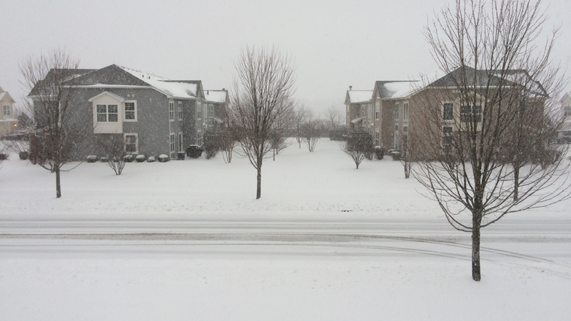 Springtime snow - March 23, 2015