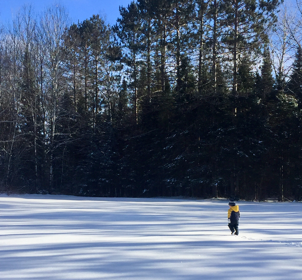 Our two and a half year old son Everett trekking through the wintry north woods of the Upper Peninsula of Michigan.